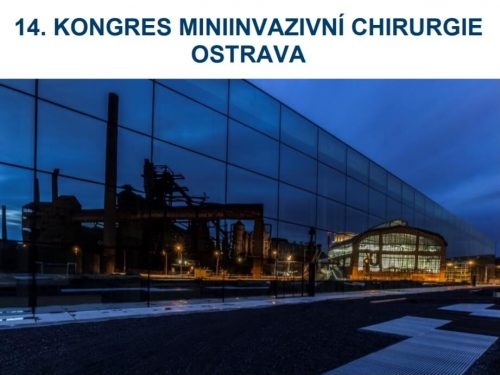 MIS 2021 Ostrava (1)